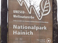 Nationalpark Hainich- Tourismus in der Region um den Kindel